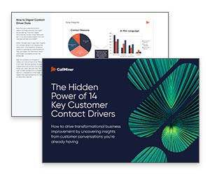 White Paper: The Hidden Power of 14 Key Customer Contact Drivers Thumbnail