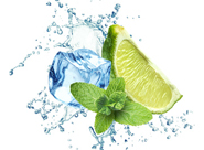 fresh-lime-