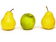 apple-pear-185