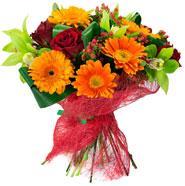 flowers-improve=185