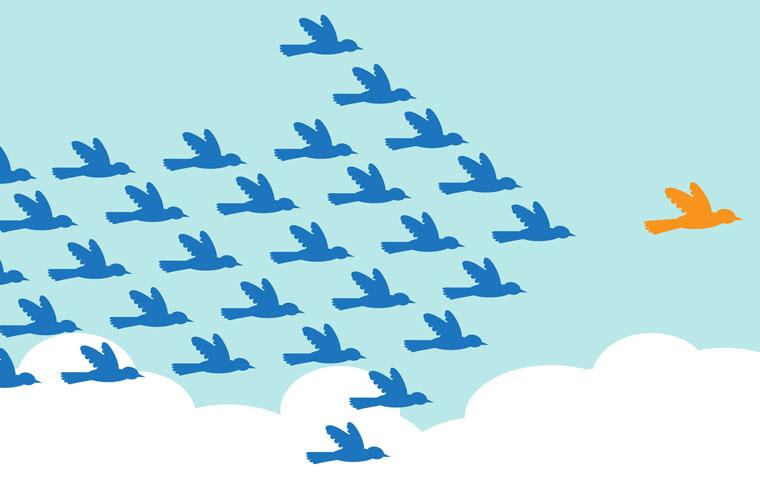 follow-leader-760