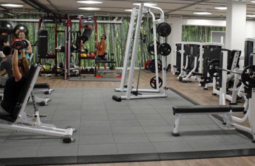 ovo-gym-510