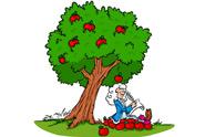 newton sitting under an apple tree