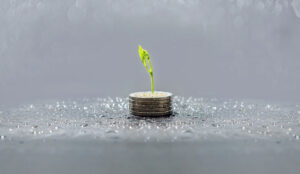 A photo of a plant growing within a pile of coins