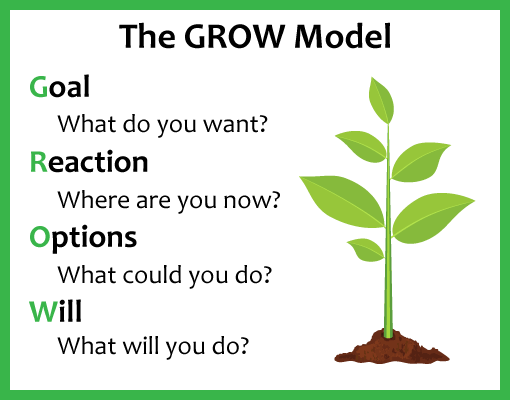 A picture of the GROW coaching model