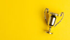 A picture of a small trophy