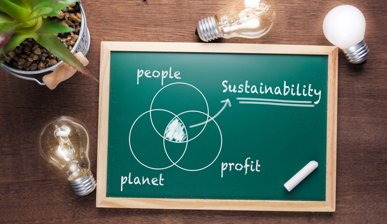 A green blackboard has a venn diagram of people, profit, planet, with sustainability linking them together in business