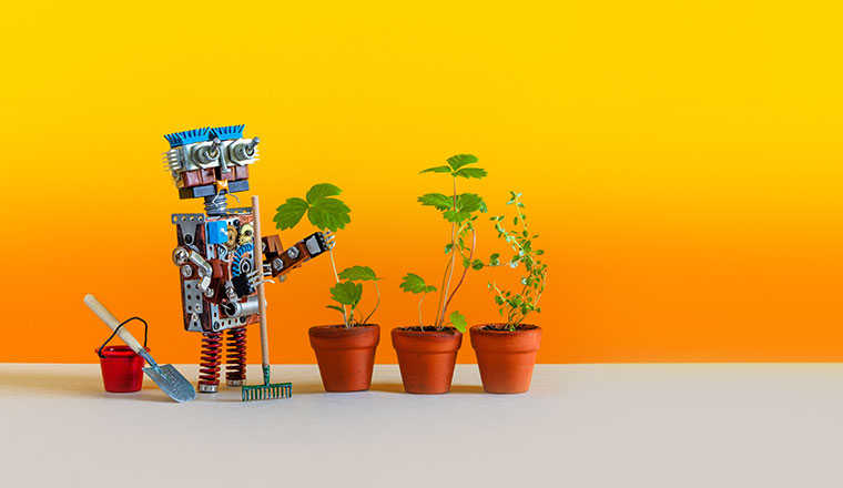 A photo of a toy robot next to plants