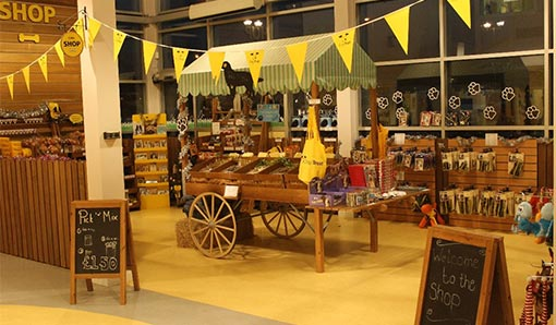 A photo of the The Dogs Trust shop