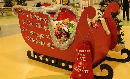 A picture of a Santa's Sleigh from the Dogs Trust contact centre