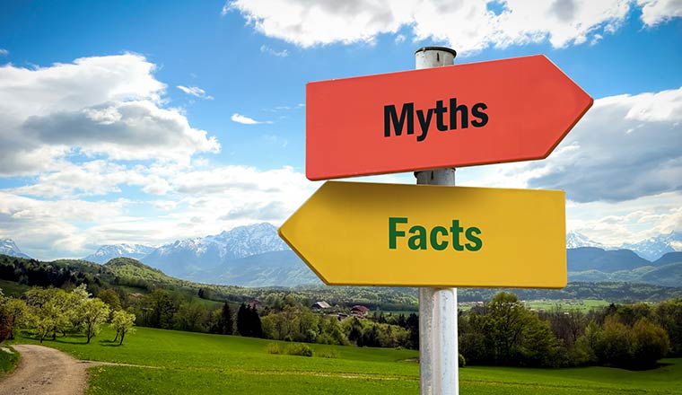 "A photo of a ""myth"" and a ""fact"" road sign"