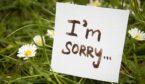 Apologising for the inconvenience, I'm Sorry
