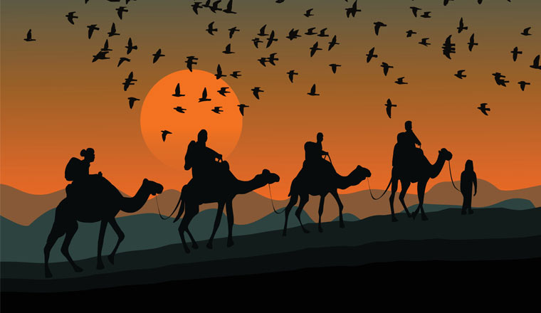 A picture of birds and camels on a journey