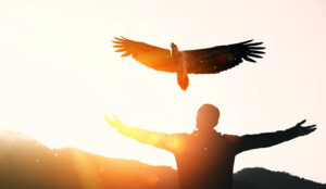 A photo of a person releasing an eagle