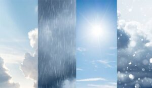 A picture of four seasons of weather