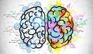 Illustration of a logical and emotional brain sides